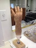 Ryan Murphy shared a picture of Adam Levine's arm from American Horror Story. Source: Twitter user MrRPMurphy