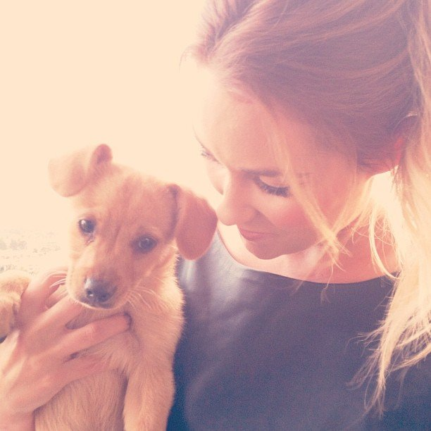 Lauren Conrad welcomed a new puppy, Fitz, into her life in October. Source: Instagram user laurenconrad