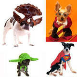 Geeky Dog Costumes