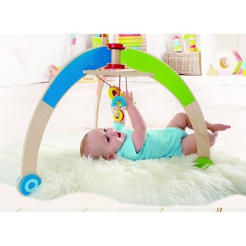 For Infants: Hape My First Gym