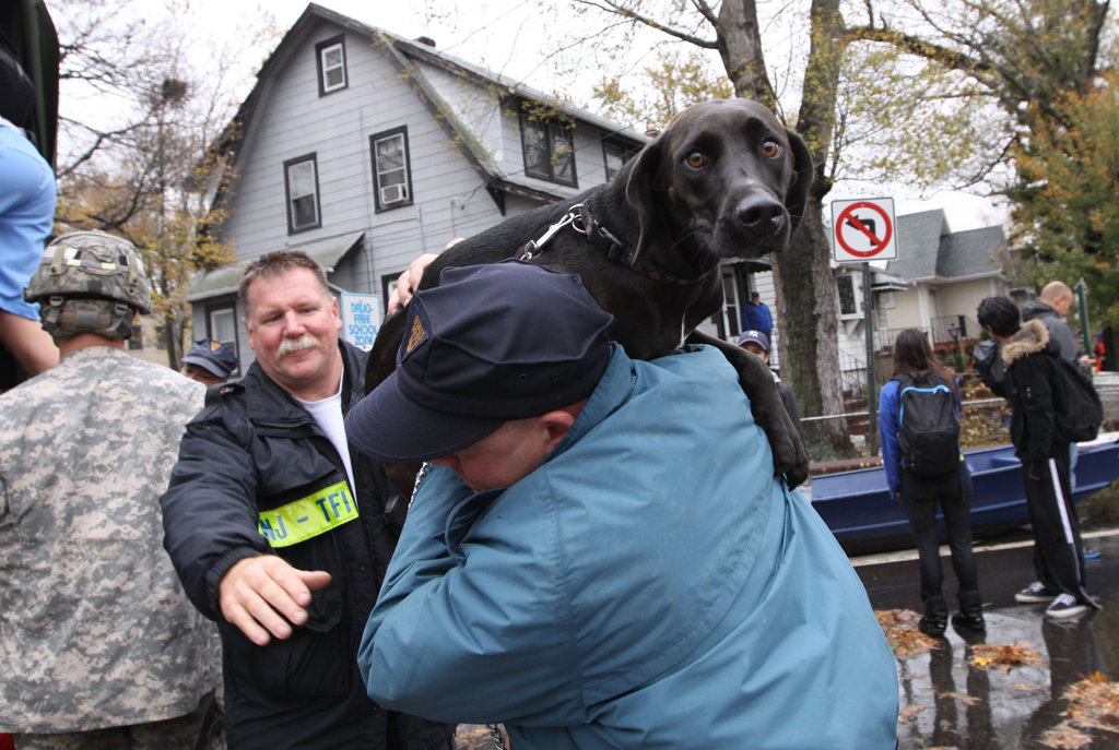 A New Jersey resident and his dog were evacuated ahead of Sandy's ruthless storm surge.