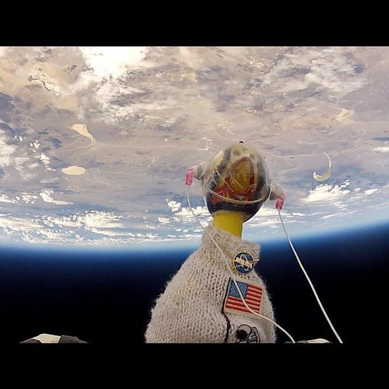 Meet Camilla, NASA's Space Chicken