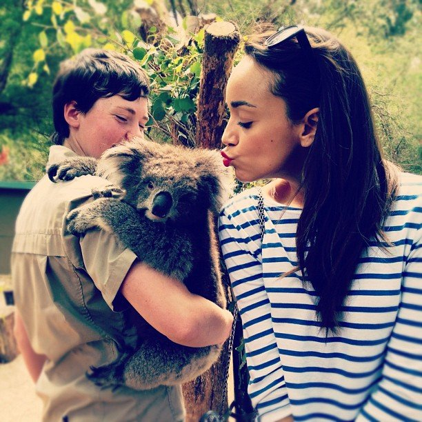 Ashley Madekwe met a koala in Melbourne. Source: Instagram user smashleybell