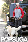 Bradley Cooper took his pup for a walk in LA.