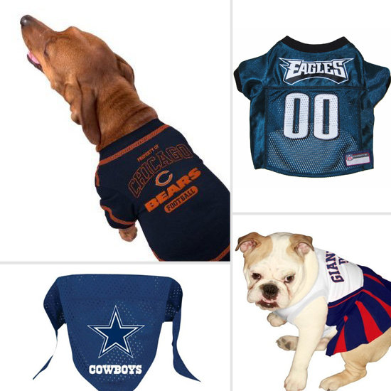 Touchdown! Adorable NFL Dog Gear Perfect For Game Day