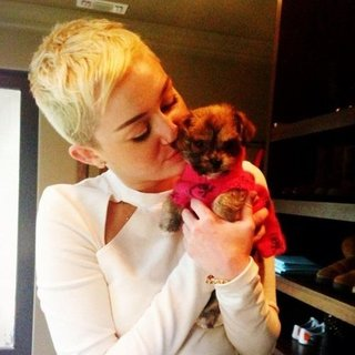 Celebrity Instagram Pictures | Nov. 29, 2012