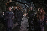 Ian McKellan, Adam Brown, John Callen, Mark Hadlow, Jed Brophy, Aiden Turner, William Kircher, Martin Freeman, Graham McTavish, and Peter Hambleton in The Hobbit: An Unexpected Journey.
