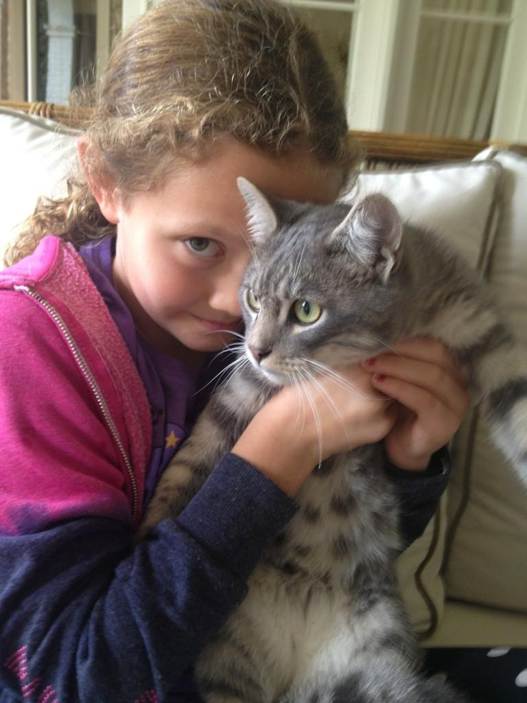 Judd Apatow and his daughter found a stray cat. Source: Twitter user JuddApatow