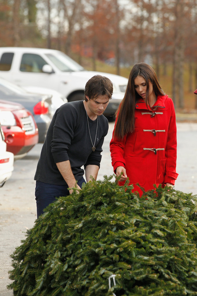 Nina Dobrev and Ian Somerhalder picked out their Christmas tree.