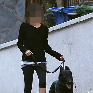 Celebrity Walking Dog Iro | Picture