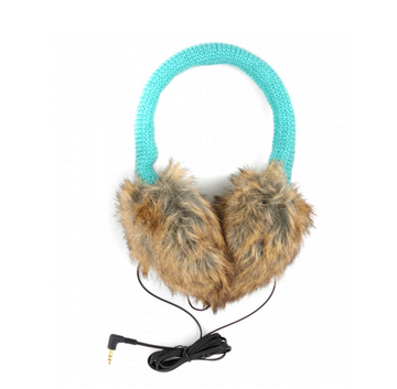 Earmuffs With Earbuds