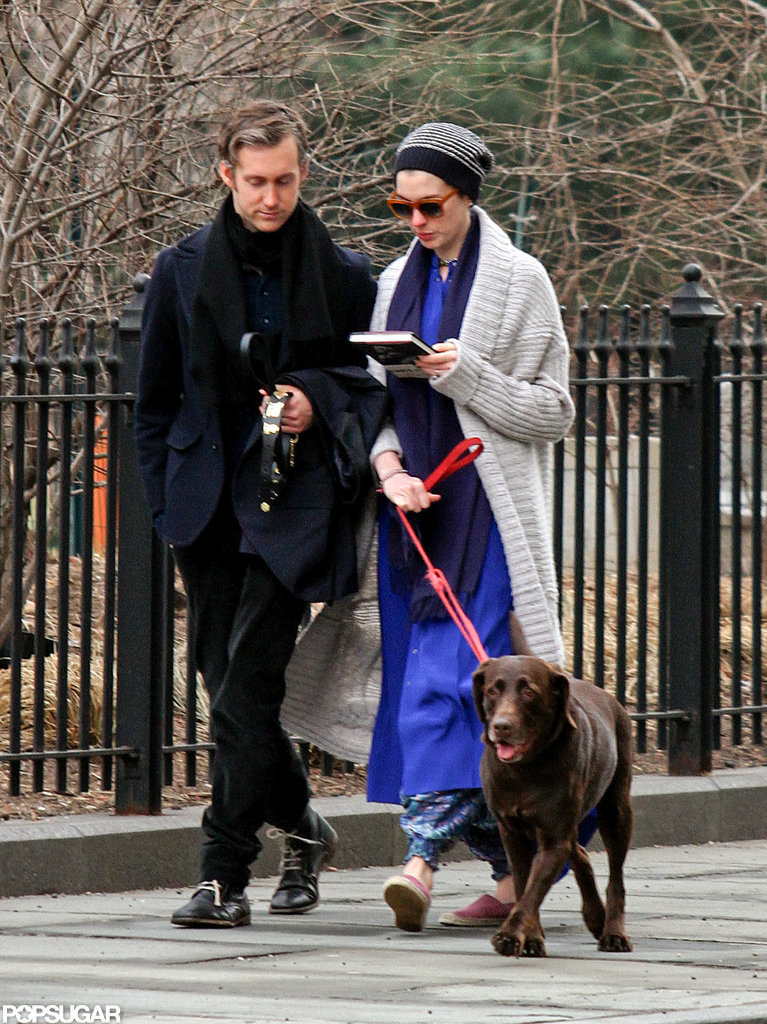 Anne Hathaway and Adam Shulman took their dog for a walk.
