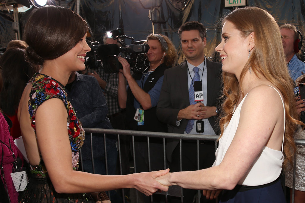 Marion Cotillard shared a moment with Amy Adams on the red carpet.