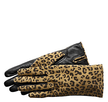 Touch Tec Gloves