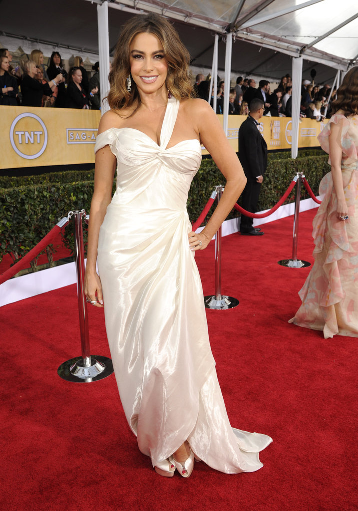 Sofia Vergara dazzled in a delicate Donna Karan gown.