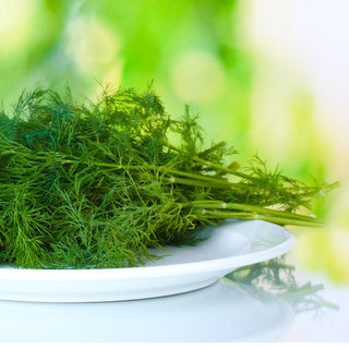 What to Do With Leftover Dill