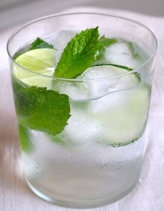 Garden and Tonic