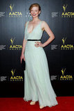 Sarah Snook wore a light blue gown to the AACTA Awards in Sydney.