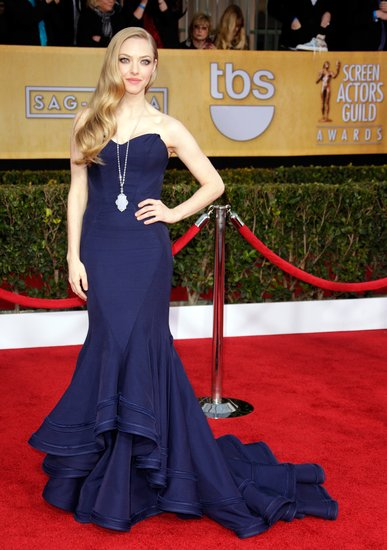 Amanda Seyfried walked the SAGs red carpet in a gorgeous navy blue Zac Posen gown.