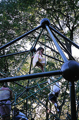 Are The Lawyers Ruining Our Playgrounds?