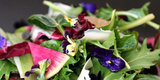Pink Grapefruit and Purple Pansies Brighten a Valentine's Day Salad