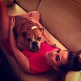 Chrissy Teigen cuddled with her dog. Source: Instagram user chrissy_teigen