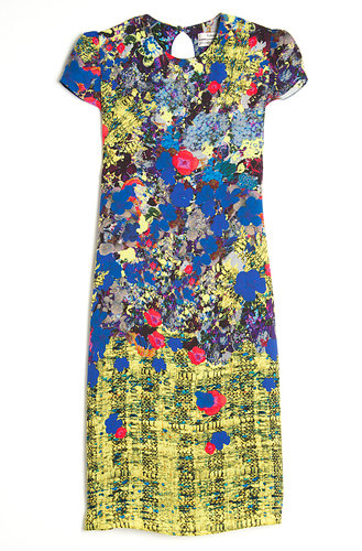 Erdem Aurelia Shift Dress