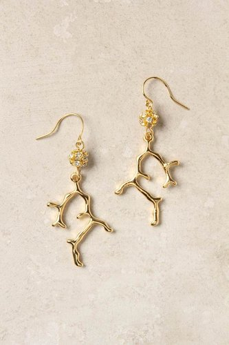 Staghorn Reef Earrings