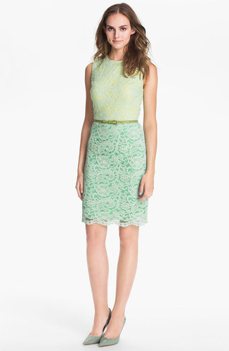 Maggy London Belted Lace Sheath Dress