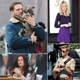 Emma Stone, Tom Hardy, Isla Fisher, and More Stars on Set