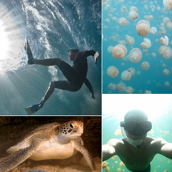 Life Is the Bubbles: 6 Vimeo Videos That Take You Under the Sea