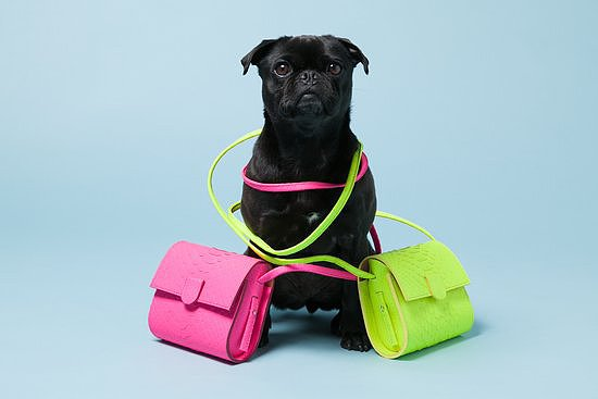 Pepper here is a Pug who sometimes can't decide on which bag to wear, so she double-bags it to be safe. Photo courtesy of Avenue32