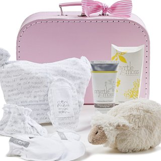 Baby Shower Gifts Under $100
