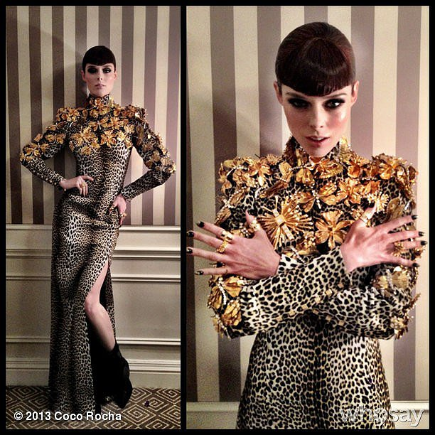 Coco Rocha struck an avant-garde pose in her Fausto Puglisi for Ungaro dress. Source: Coco Rocha on WhoSay