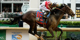 Straight From the Gates: Highlights From the 139th Kentucky Derby