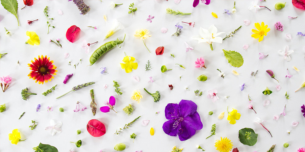 Leap into Spring With These 10 Desktop Backgrounds