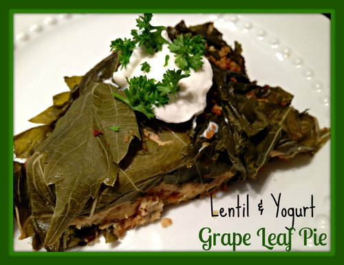 Lentil & Yogurt Grape Leaf Pie