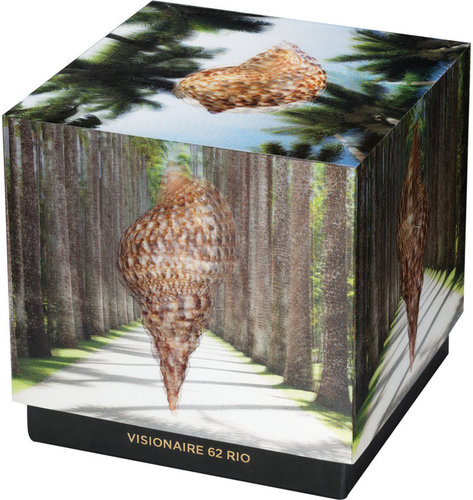 Distributed Art Publishers Visionaire No. 62 Rio, Campana Brothers Case - Limited Edition