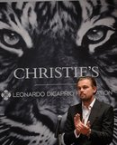 Leo's Star-Studded Auction Makes Millions For the Environment