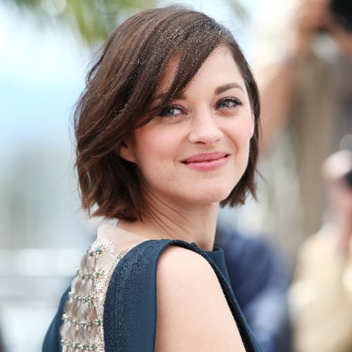 Cannes Festival Photocall Hair 2013 | Celebrity Pictures