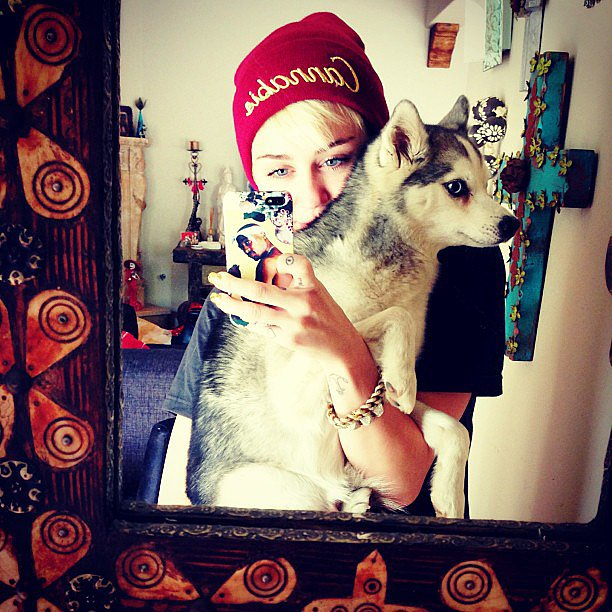 Miley Cyrus took a selfie with one of her many pups in May. Source: Instagram user mileycyrus