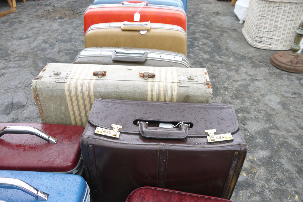 Savvy Suitcases