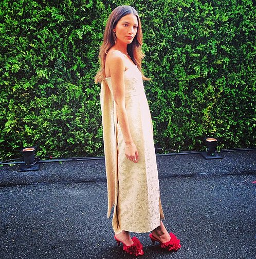 Lily Aldridge made jaws drop when she appeared in an outfit all by The Row.  Source: Instagram user CFDA