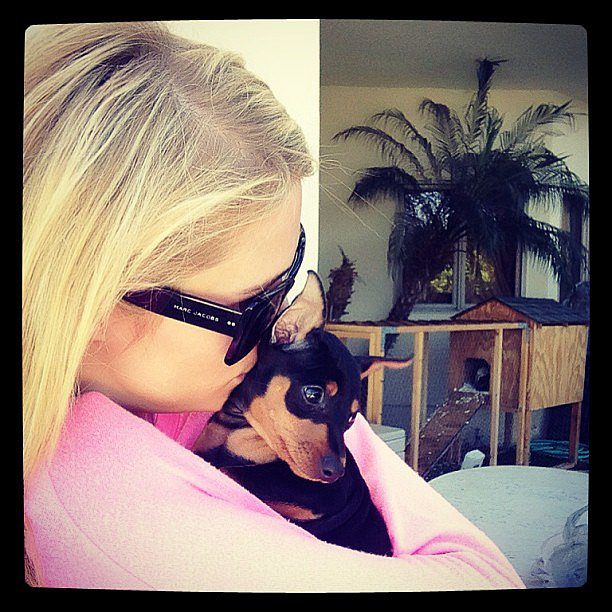 Paris Hilton cuddled with her new rescue pup, Dollar. Source: Instagram user parishil