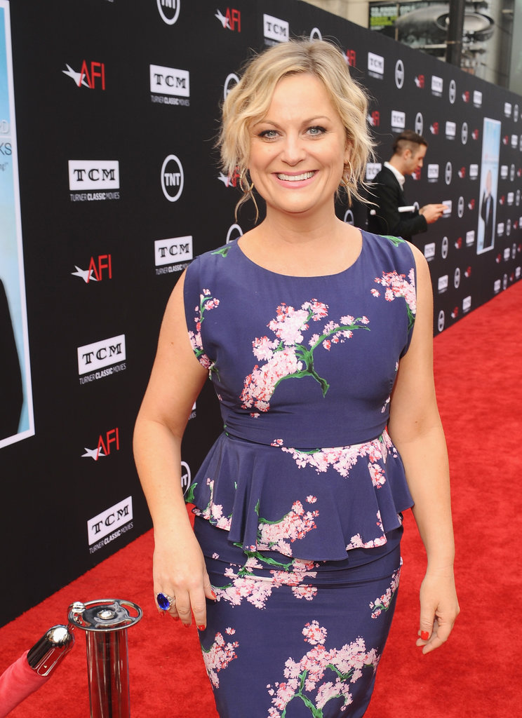 Amy Poehler wore a blue frock.