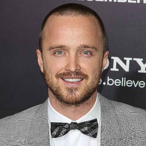 Aaron Paul Interview About End of Breaking Bad