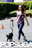 Kristen Stewart walked a black dog in LA and wore Vans tennis shoes.