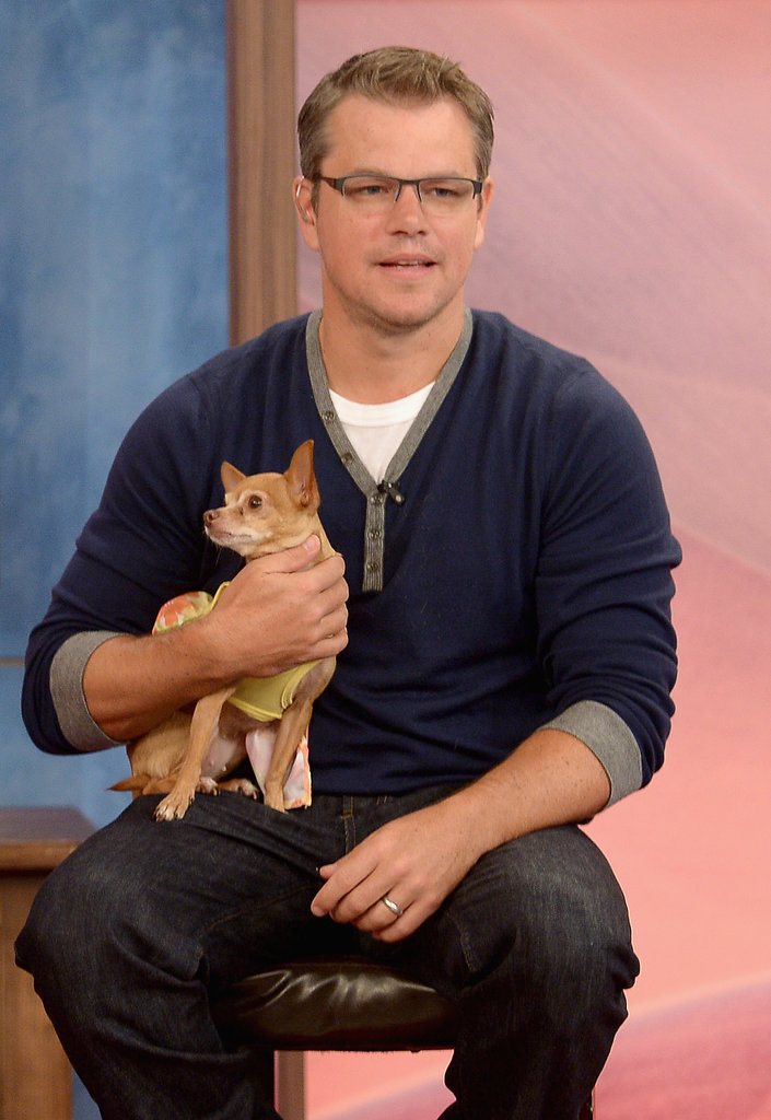 Matt Damon Shows His Soft Side With a Chihuahua