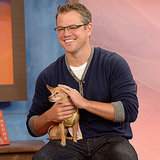 Matt Damon Holds a Chihuahua on Despierta America