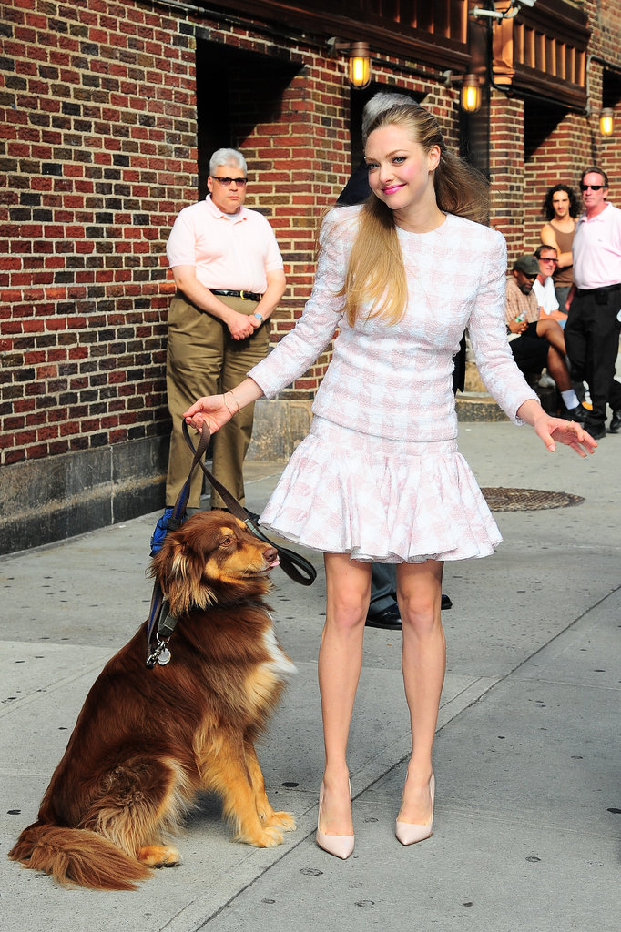Amanda Seyfried brought her dog Finn along to her appearance at the Late Show With David Letterman in NYC.